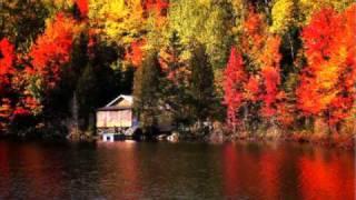 Armand Mestral - Ma cabane au Canada