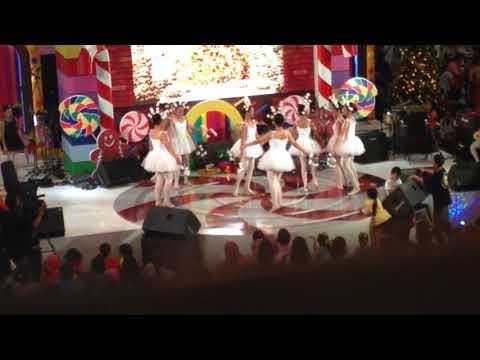 Bailamos Performance