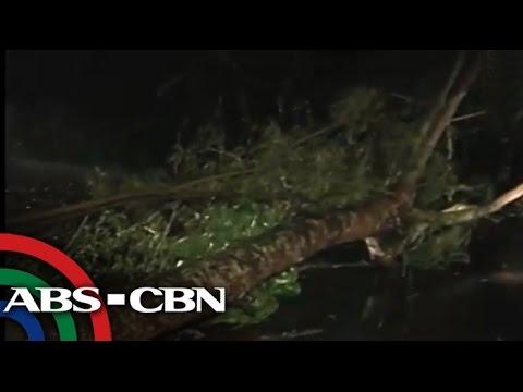 'Glenda' lashes Quezon province