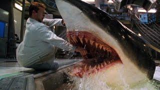 サメ映画トップ10