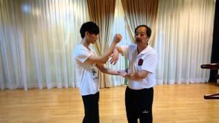 Lee Man Hung Ving Tsun in Tin Shui Wai 2013 - 詠春与李 - Wing Chun - Hong Kong view on youtube.com tube online.