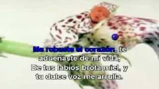 ALEX CAMPOS ME ROBASTE EL CORAZON (karaoke)