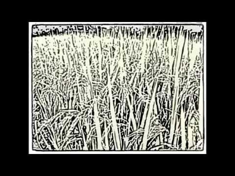 Về Với Lúa (Hương Thịnh, Quang Minh, Hiệp Hòa, Bắc Giang)