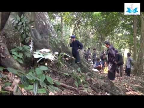 Lễ cúng rừng