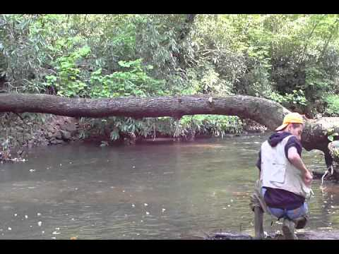 Pa trout fishing youtube for Trout fishing in pa