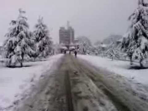 University of Kashmir - Snowfall Dec 31, 2013