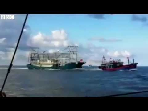 China Sinks Vietnam Ship: China-Vietnam dispute Fishing boat rammed at sea