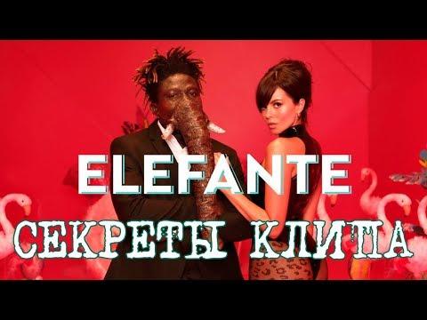 ELEFANTE / Секреты клипа от психиатра