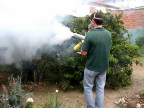 Pulverização sem inseticida com ótimo resultado para pulgão.