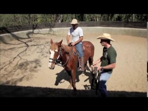 Doma de cavalos selvagens por Eduardo Moreira - inedito no Brasil