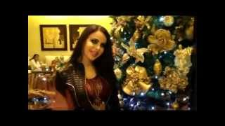 Merry Christmas & Happy new year 2013 From Layal Abboud