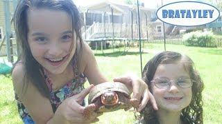 The Turtle Hunters (WK 175.6) Bratayley