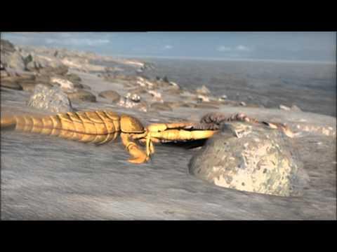 Armagedon zvieracej ríše - Lúče smrti