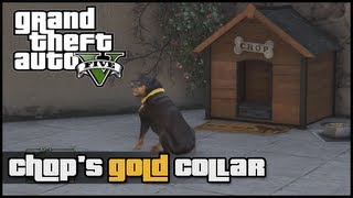 Grand Theft Auto V: How To Get Chop's Gold Collar (GTA 5