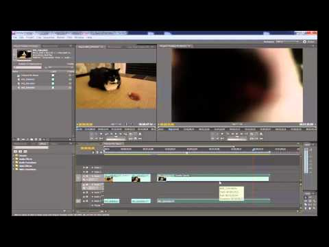 Tutorial on How to use Adobe Premiere Pro CS 5.5 - The Basics: BathroomFX Day 7