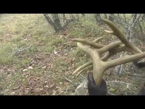 Rattling for Whitetail Deer............BURN THE ANTLERS