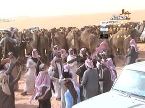 مسيرة منقية / فراج بن جفران السبيعي ..