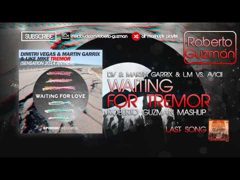 Dimitri Vegas & Martin Garrix & Like Mike vs. Avicii - Waiting For Tremor (Roberto Guzmán Mashup)