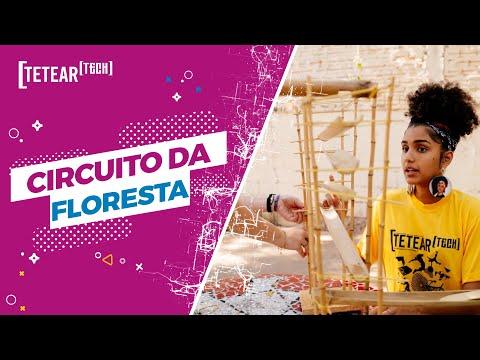 Circuito da Floresta: Brinquedo com Bambu - Tetear Tech 2019