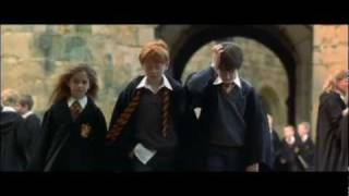 Harry Potter And The Philosopher's Stone Dutch Subtitles