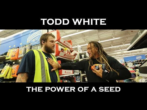 Todd White - The Power Seed  (Shopping Testimonies)
