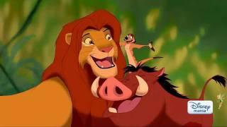 O Rei Leão Hakuna Matata Em HD E Dublado Disney Mania