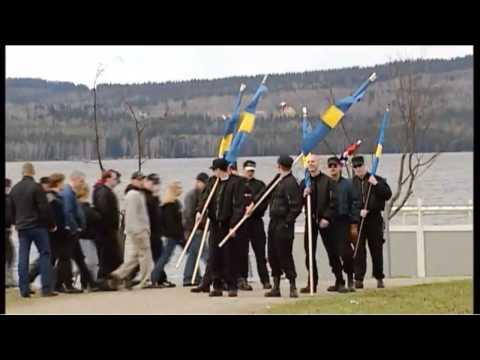 Vetenskapens Värld - Sverigedemokraterna 8 sep 2014