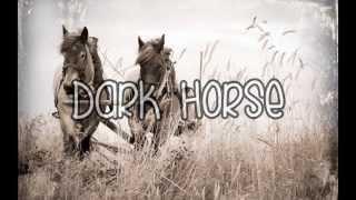 Katy Perry Dark House (Lyrics)