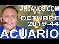 Video Horóscopo Semanal ACUARIO  del 27 Octubre al 2 Noviembre 2019 (Semana 2019-44) (Lectura del Tarot)