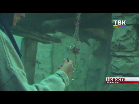 Короткометражные фильмы оценили гости культурного пространства «Квадрат»