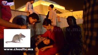 فأر يخلق الحدث في مسجد الحسن الثاني و يخلف إغماءات وعدد كبير من الأطفال التائهين   |   بــووز