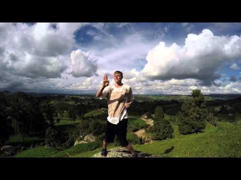 Siu Lim Tao SLOW MOTION Wing Chun Kung Fu