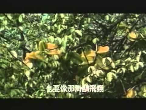www.letuan.biz | Nhạc Trong Phim Âm Dương Lộ 7
