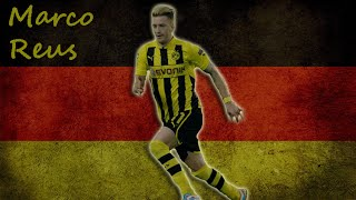 [Marco Reus • Goal, Assist & Skills • 2013/2014] Video