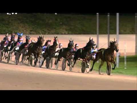 Vidéo de la course PMU PRIX DEX BEUCKENSWIJK (BOKO CHAMPIONS CHALLENGE)
