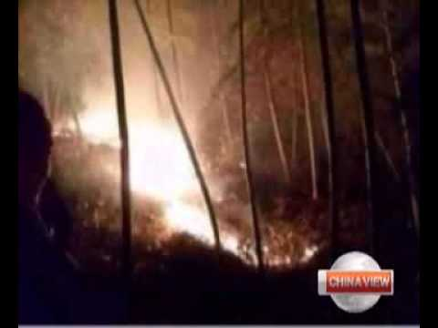 Fighter jet crashes in E China