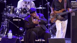 James Cotton received the B.B. King Award 2015 (2015-06-27) Salle Wilf