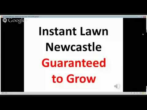 instant lawn Newcastle GUARANTEED TO GROW !