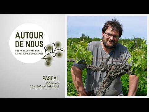 Autour de Nous - Épisode 8 - Pascal - Vigneron Bio à Saint-Vincent-de-Paul
