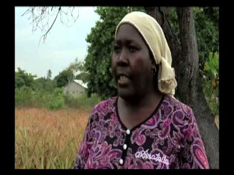 "Africa Farmers ""Youth and Women in Agriculture"""
