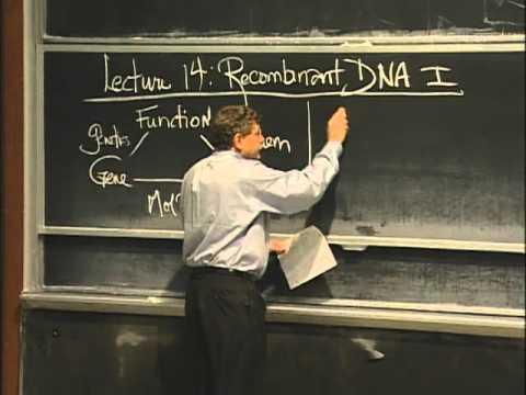 基礎生物學
