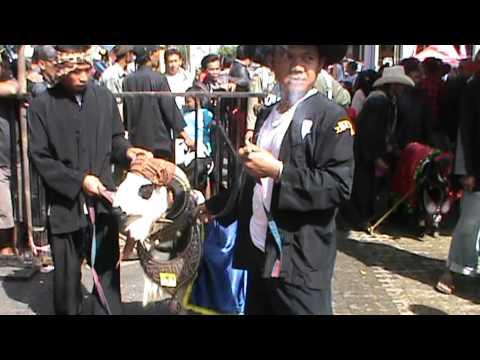 DOMBA GARUT CATWALK GARUT FESTIVAL 2