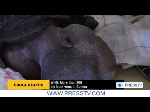 Ebola kills 208 people in Guinea  WHO