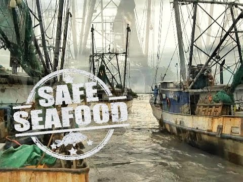 SAFE SEAFOOD  From the Caribbean
