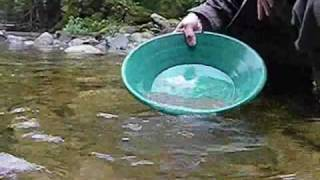 Goldpanning Stave Lake