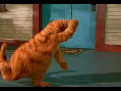 Youtube garfield dancing wooly bully remix youtube - Garfield et cie youtube ...