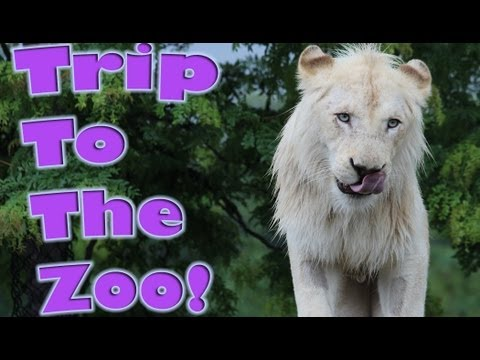 Trip to the Toronto Zoo
