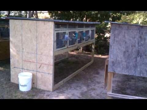 Building rabbit+chicken cage. Stubborn video.