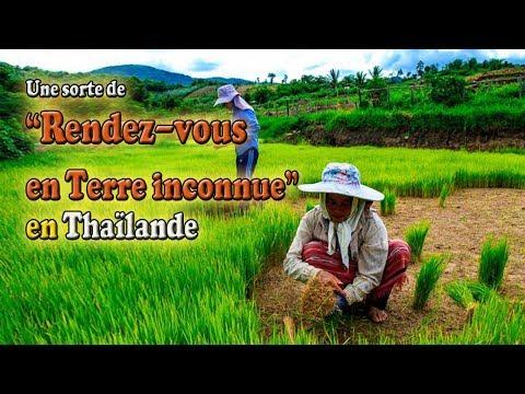 rendez-vous en terre inconnue thaïlande