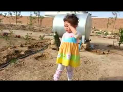 Little Afghan Girl BAREEN sing Afghani Tarana